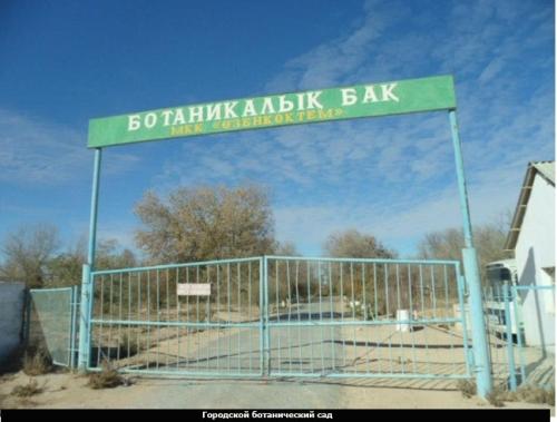 albert markhabaeyv garden