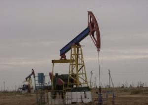 buzachi strike ladakz
